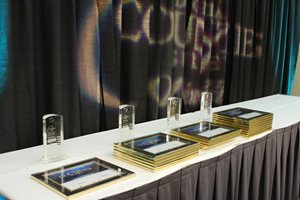 Roanoke Takes Top Digital Honors